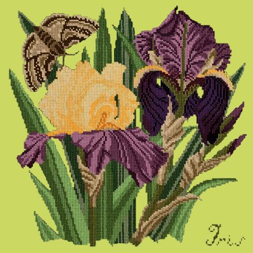 Iris Needlepoint Kit Elizabeth Bradley Design Pale Lime