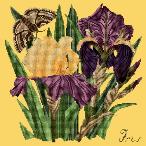 Iris Needlepoint Kit Elizabeth Bradley Design Sunflower Yellow