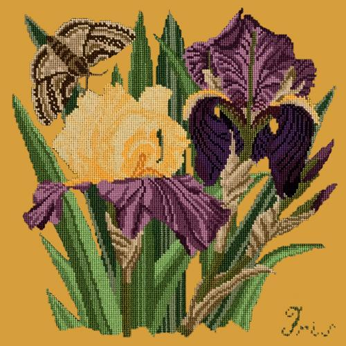 Iris Needlepoint Kit Elizabeth Bradley Design Yellow