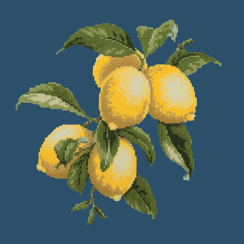 Lemons Needlepoint Kit Elizabeth Bradley Design Dark Blue