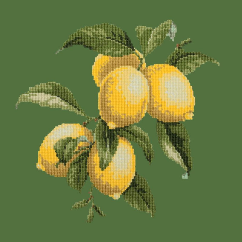 Lemons Needlepoint Kit Elizabeth Bradley Design Dark Green