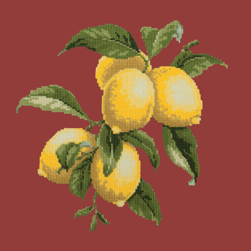 Lemons Needlepoint Kit Elizabeth Bradley Design Dark Red