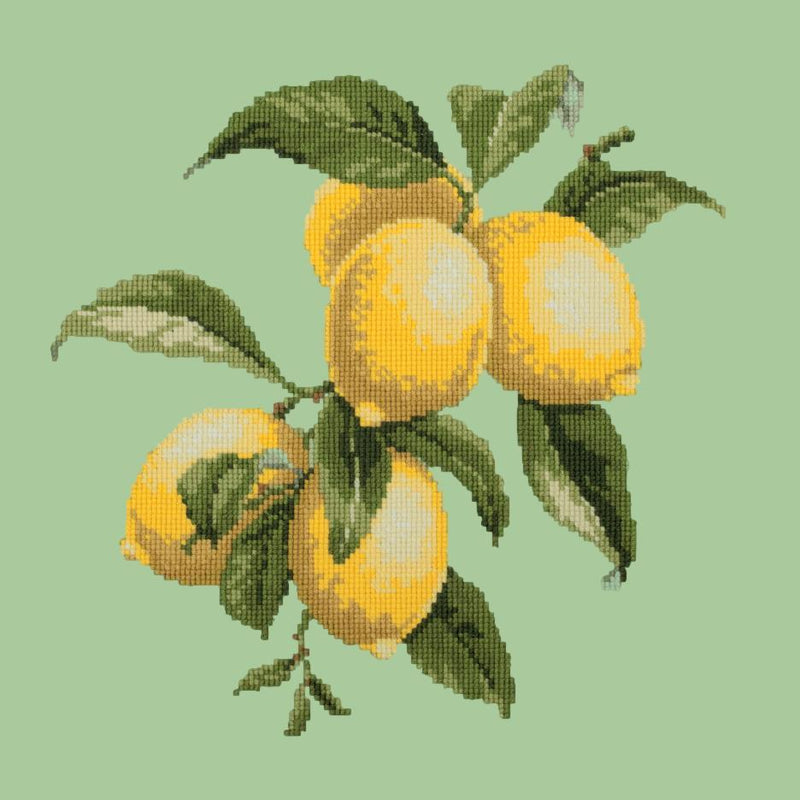 Lemons Needlepoint Kit Elizabeth Bradley Design Pale Green