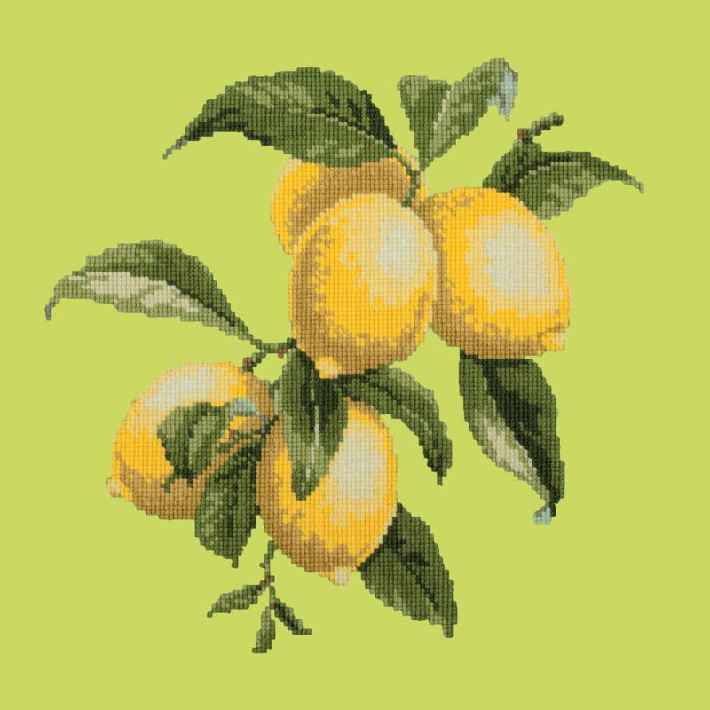 Lemons Needlepoint Kit Elizabeth Bradley Design Pale Lime