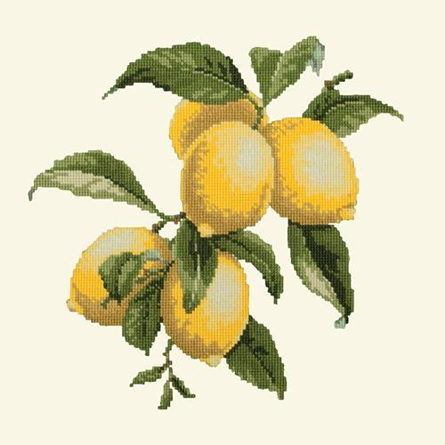 Lemons Needlepoint Kit Elizabeth Bradley Design Winter White