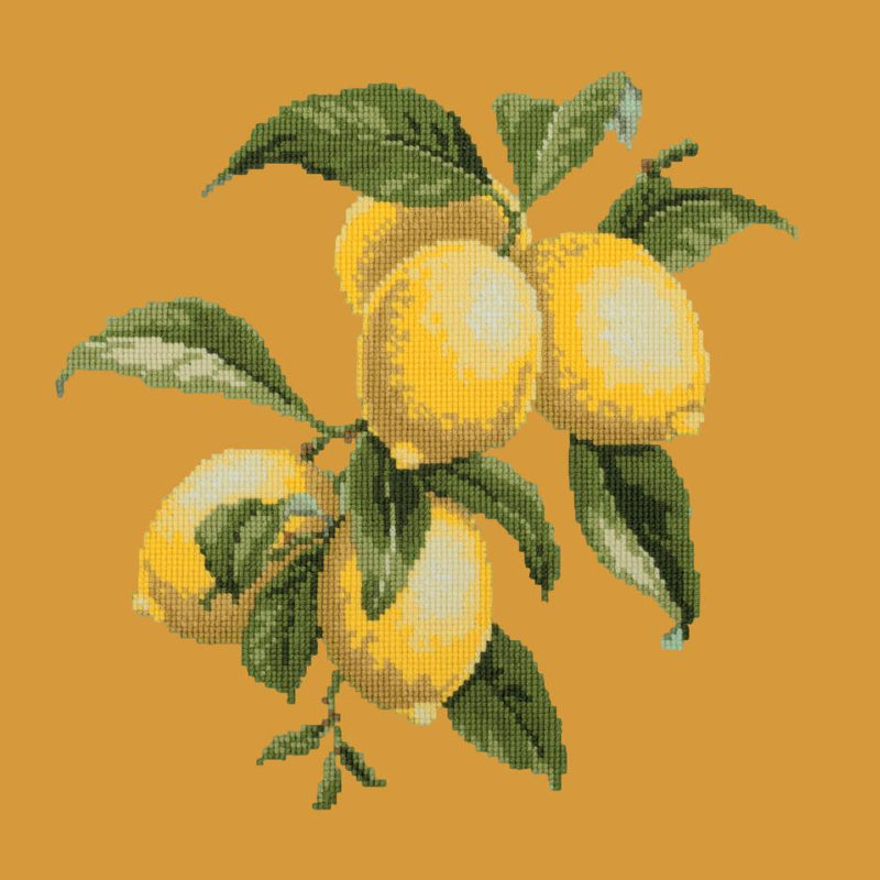 Lemons Needlepoint Kit Elizabeth Bradley Design Yellow