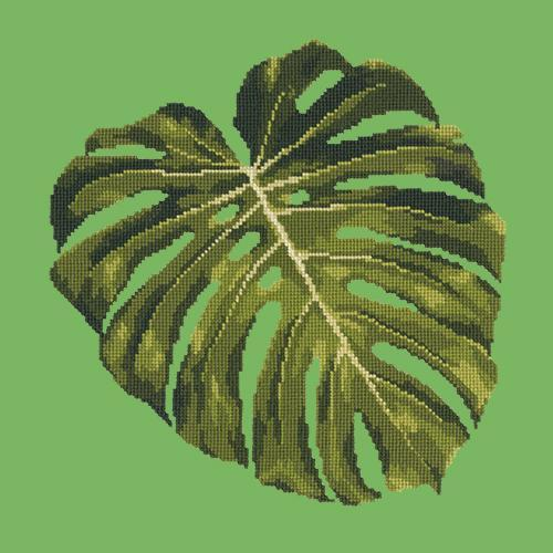 Monstera Leaf Needlepoint Kit Elizabeth Bradley Design Grass Green