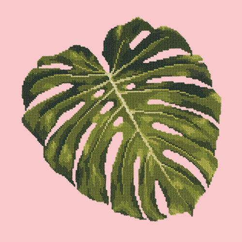 Monstera Leaf Needlepoint Kit Elizabeth Bradley Design Pale Rose
