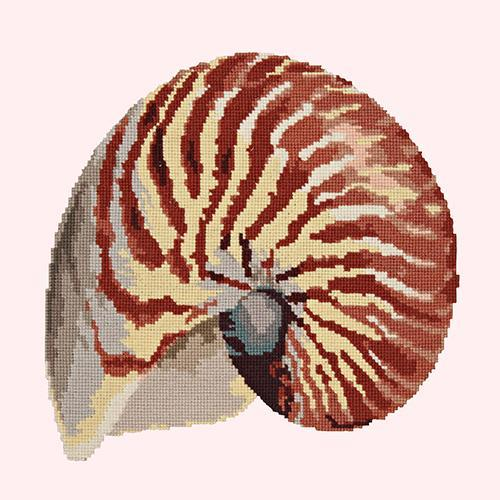 Nautilus Needlepoint Kit Elizabeth Bradley Design Cream