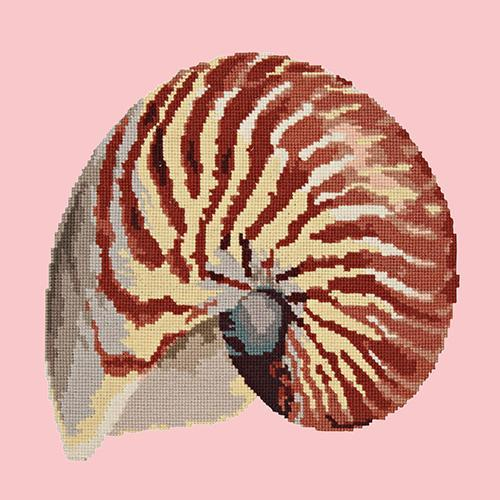 Nautilus Needlepoint Kit Elizabeth Bradley Design Pale Rose