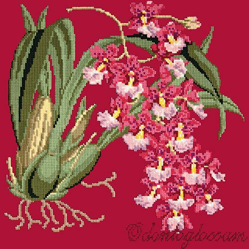 Odontoglossum (Tiger Orchid) Needlepoint Kit Elizabeth Bradley Design Bright Red
