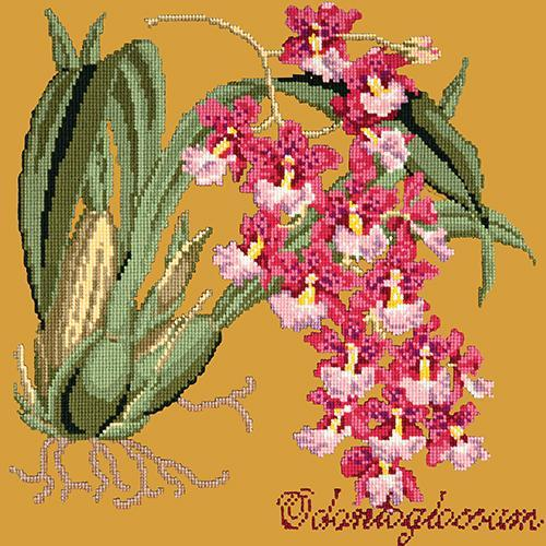 Odontoglossum (Tiger Orchid) Needlepoint Kit Elizabeth Bradley Design Yellow