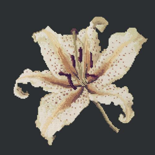 Oriental Lily Needlepoint Kit Elizabeth Bradley Design Black