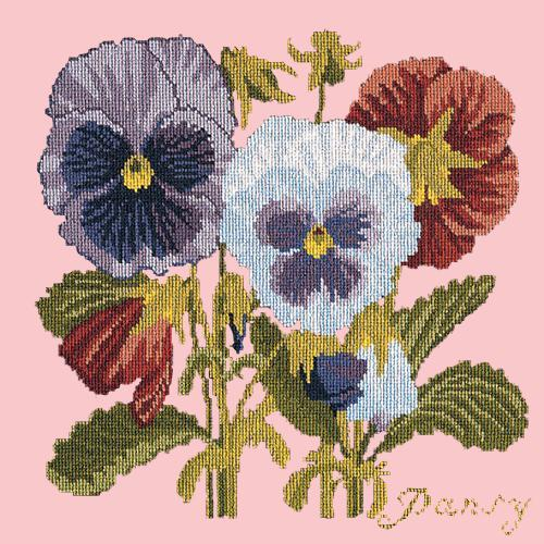 Pansy Needlepoint Kit Elizabeth Bradley Design Pale Rose