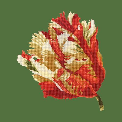 Parrot Tulip Needlepoint Kit Elizabeth Bradley Design Dark Green