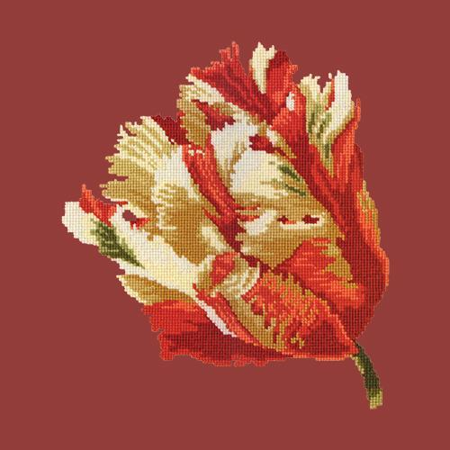 Parrot Tulip Needlepoint Kit Elizabeth Bradley Design Dark Red