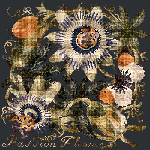 Passion Flower Needlepoint Kit Elizabeth Bradley Design Black