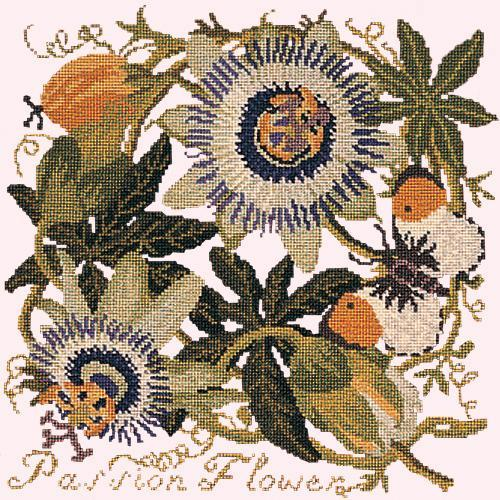 Passion Flower Needlepoint Kit Elizabeth Bradley Design Cream