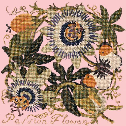 Passion Flower Needlepoint Kit Elizabeth Bradley Design Pale Rose