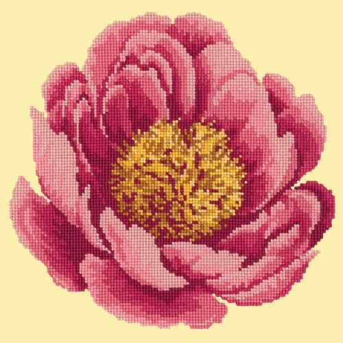 Peony Needlepoint Kit Elizabeth Bradley Design Butter Yellow
