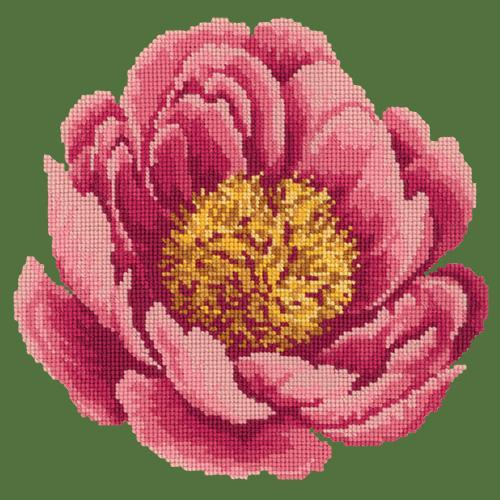 Peony Needlepoint Kit Elizabeth Bradley Design Dark Green