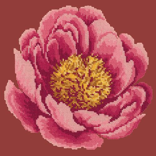 Peony Needlepoint Kit Elizabeth Bradley Design Dark Red