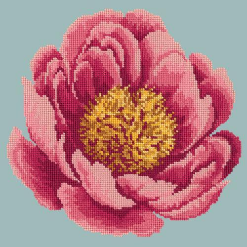 Peony Needlepoint Kit Elizabeth Bradley Design Pale Blue
