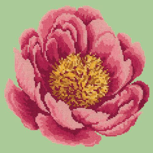 Peony Needlepoint Kit Elizabeth Bradley Design Pale Green