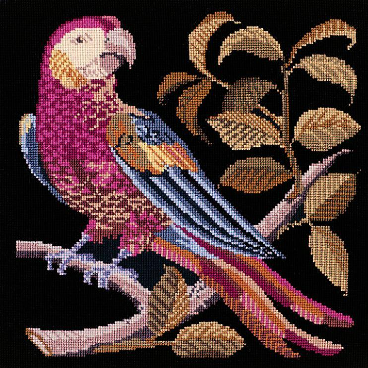 Pete the Parrot Needlepoint Kit Elizabeth Bradley Design Black