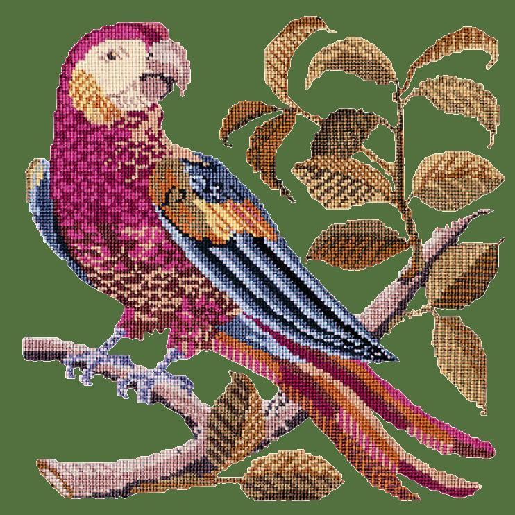 Pete the Parrot Needlepoint Kit Elizabeth Bradley Design Dark Green