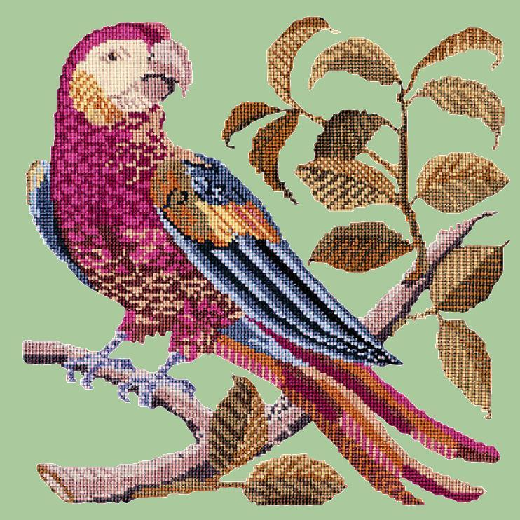 Pete the Parrot Needlepoint Kit Elizabeth Bradley Design Pale Green