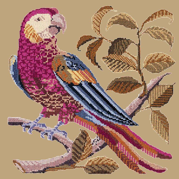Pete the Parrot Needlepoint Kit Elizabeth Bradley Design Sand