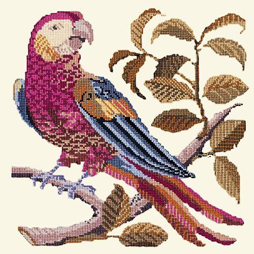 Pete the Parrot Needlepoint Kit Elizabeth Bradley Design Winter White