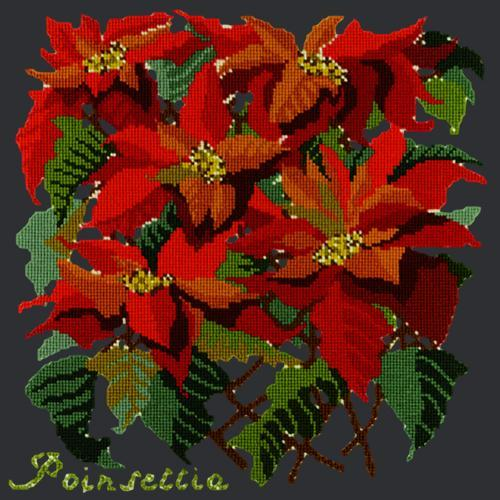 Poinsettia Needlepoint Kit Elizabeth Bradley Design Black