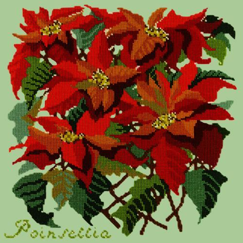 Poinsettia Needlepoint Kit Elizabeth Bradley Design Pale Green