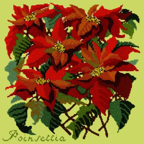 Poinsettia Needlepoint Kit Elizabeth Bradley Design Pale Lime