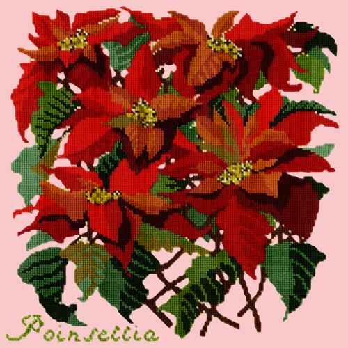 Poinsettia Needlepoint Kit Elizabeth Bradley Design Pale Rose