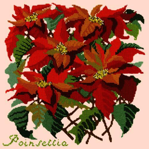 Poinsettia Needlepoint Kit Elizabeth Bradley Design Salmon Pink