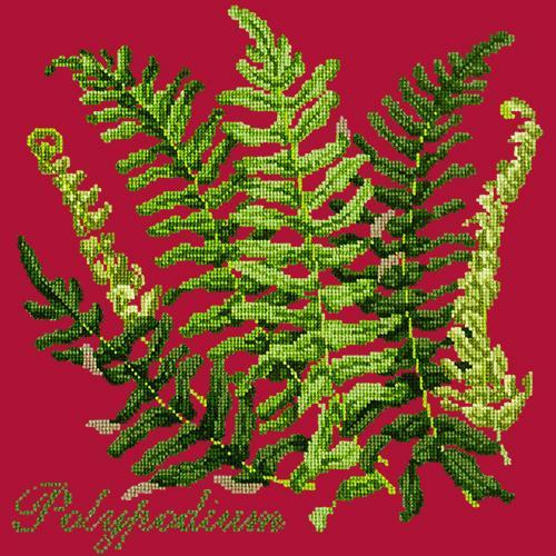 Polypodium Needlepoint Kit Elizabeth Bradley Design Bright Red
