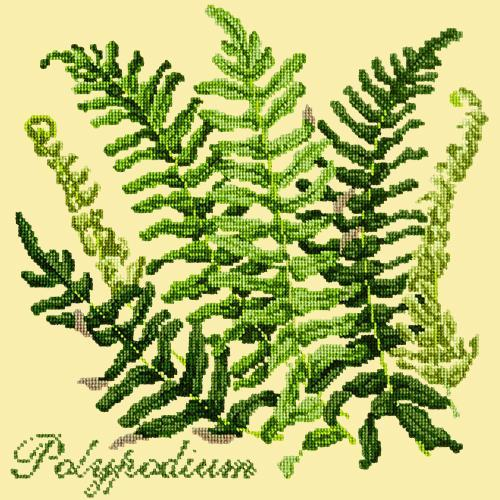 Polypodium Needlepoint Kit Elizabeth Bradley Design Butter Yellow