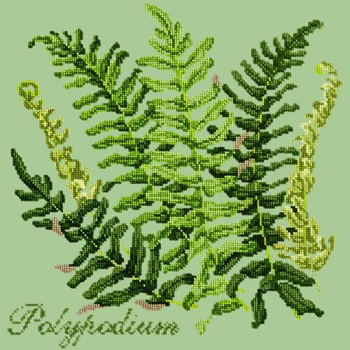 Polypodium Needlepoint Kit Elizabeth Bradley Design Pale Green