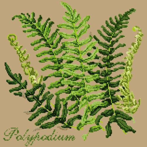 Polypodium Needlepoint Kit Elizabeth Bradley Design Sand