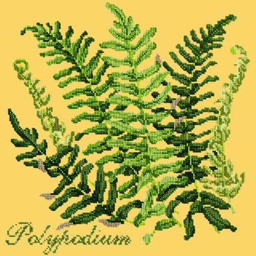 Polypodium Needlepoint Kit Elizabeth Bradley Design Sunflower Yellow