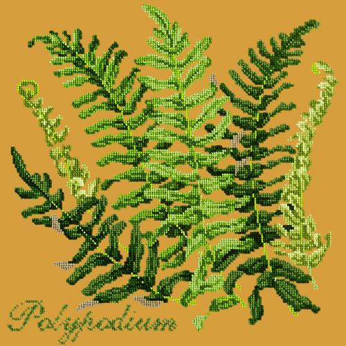 Polypodium Needlepoint Kit Elizabeth Bradley Design Yellow