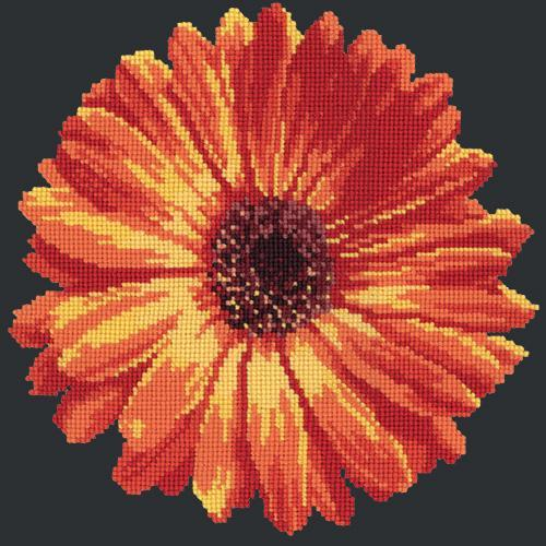 Pot Marigold Needlepoint Kit Elizabeth Bradley Design Black