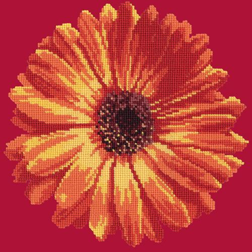 Pot Marigold Needlepoint Kit Elizabeth Bradley Design Bright Red