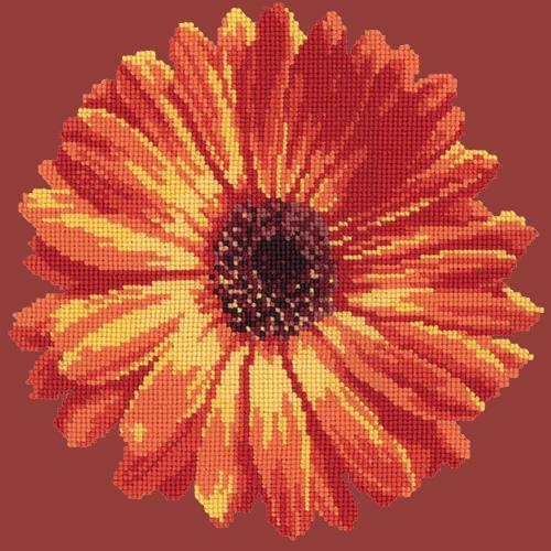 Pot Marigold Needlepoint Kit Elizabeth Bradley Design Dark Red