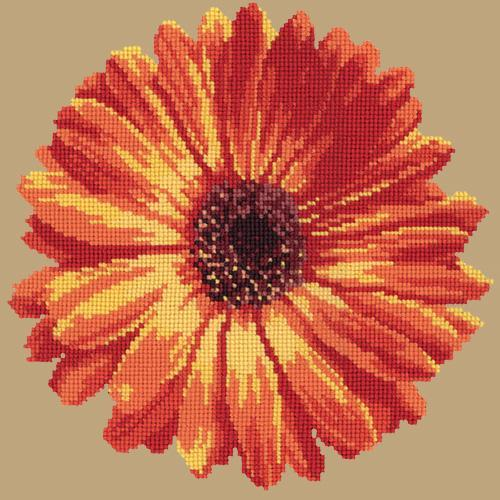 Pot Marigold Needlepoint Kit Elizabeth Bradley Design Sand