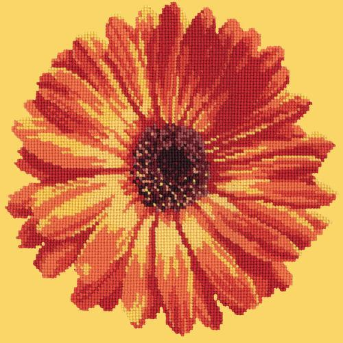 Pot Marigold Needlepoint Kit Elizabeth Bradley Design Sunflower Yellow