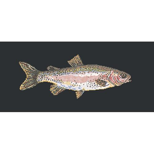 Rainbow Trout Needlepoint Kit Elizabeth Bradley Design Black